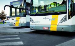 Foto van twee autobussen van De Lijn