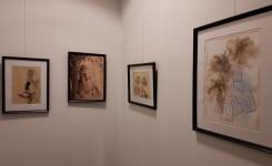 Foto van enkele schilderijen op de tentoonstelling rond Alice Nahon